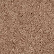 Shaw Floors Cabinanet Solid Mocha Mist 00730_E0663