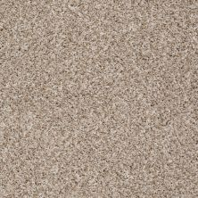 Shaw Floors Cabinanet Berber Casual Ivory 00130_E0664