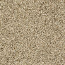 Shaw Floors Cabinanet Berber Moonlit Sand 00230_E0664