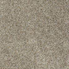 Shaw Floors Cabinanet Berber Stingray 00530_E0664