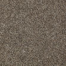 Shaw Floors Cabinanet Tweed Storm Cloud 00540_E0665