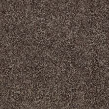 Shaw Floors Cabinanet Tweed Java Bean 00541_E0665