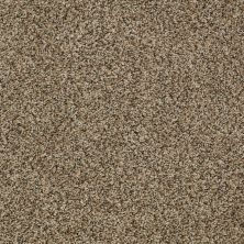 Shaw Floors Cabinanet Tweed Apple Cider 00740_E0665