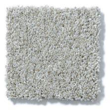 Shaw Floors Painted Sand Swept 00122_E0670
