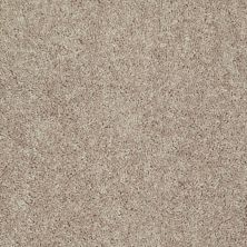 Shaw Floors Value Collections Tactical Net Honey 00715_E0679