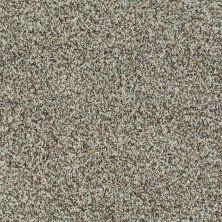 Shaw Floors Inspire Me (b) Aged Wood 00530_E0680