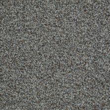 Shaw Floors Inspire Me (b) Gray Flannel 00531_E0680