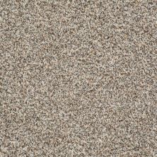 Shaw Floors Treat Me (b) Sunlit Granite 00130_E0681