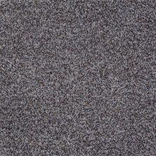 Shaw Floors Treat Me (b) Gray Flannel 00531_E0681