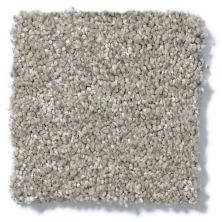 Shaw Floors Choose Me Cork Board 00720_E0684