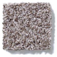 Shaw Floors Inspire Me (t) Dried Moss 00710_E0693