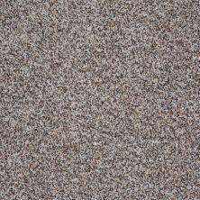 Shaw Floors Remember Me (b) Sandstone 00131_E0695