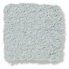 Shaw Floors Keep Me II Stainless Steel 00501_E0697
