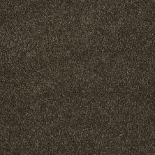 Shaw Floors Keep Me II Walnut 00705_E0697