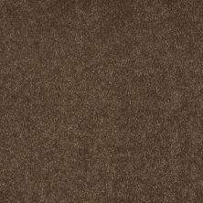 Shaw Floors Keep Me II Chestnut 00707_E0697
