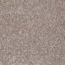 Shaw Floors Dazzle Me Texture Flax 00104_E0702