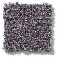 Shaw Floors Dazzle Me Texture Storm 00504_E0702