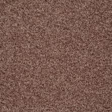 Shaw Floors Dazzle Me Texture Saddle 00703_E0702