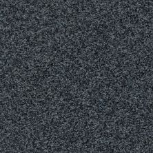 Shaw Floors Dazzle Me Twist Indigo Mood 00412_E0703