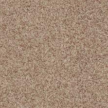 Shaw Floors Dazzle Me Twist Wheat 00710_E0703