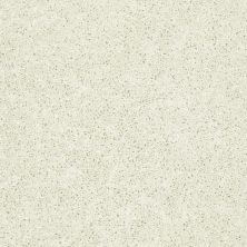 Shaw Floors Tactical Linen 00103_E0704