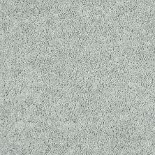 Shaw Floors Tactical Stone 00500_E0704