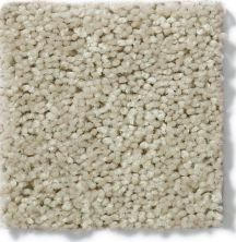 Shaw Floors Tactical Pebble 00704_E0704