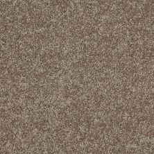 Shaw Floors Tactical Mocha 00713_E0704