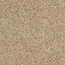 Shaw Floors Value Collections Expect More (b) Net Parchment 00120_E0709