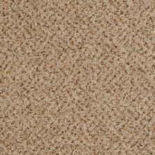 Shaw Floors Value Collections Expect More (b) Net Canoe 00121_E0709