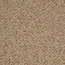 Shaw Floors Value Collections Expect More (b) Net Mocha Malt 00122_E0709