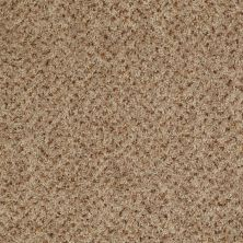 Shaw Floors Value Collections Expect More (b) Net Hop Sack 00720_E0709