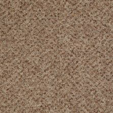 Shaw Floors Value Collections Expect More (b) Net Bee Hive 00721_E0709