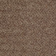 Shaw Floors Value Collections Expect More (b) Net Weathered Wood 00722_E0709