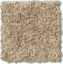 Shaw Floors Value Collections Expect More (s) Net Prairie Dust 00107_E0710