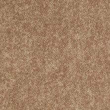 Shaw Floors Value Collections Expect More (s) Net Corn Silk 00205_E0710