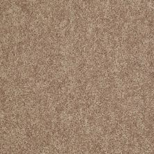 Shaw Floors Value Collections Expect More (s) Net Sahara Buff 00701_E0710