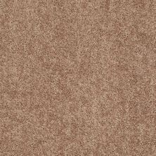Shaw Floors Value Collections Expect More (s) Net Mocha Mist 00710_E0710