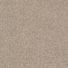Shaw Floors Value Collections Full Court Net Bare Mineral 00105_E0713