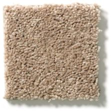 Shaw Floors Value Collections Full Court Net Tassel 00107_E0713