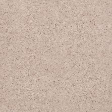 Shaw Floors Value Collections Full Court Net Butter Cream 00200_E0713