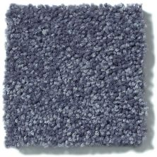 Shaw Floors Value Collections Full Court Net Charcoal 00545_E0713