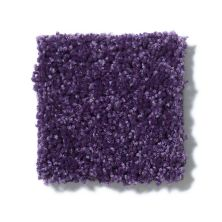 Shaw Floors Value Collections Full Court Net Grape Slushy 00931_E0713