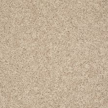 Shaw Floors Value Collections Go Big Net Pearlescent 00100_E0718