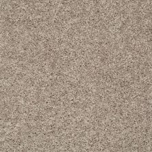 Shaw Floors Value Collections Go Big Net Glimmer 00501_E0718