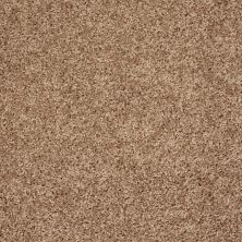 Shaw Floors Value Collections Go Big Net Pebble 00701_E0718