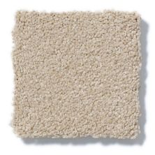 Shaw Floors True Soft Refined Vision I Masonry 00110_E0726