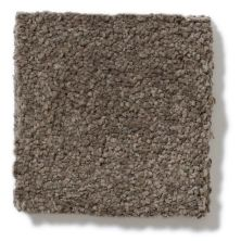 Shaw Floors True Soft Refined Vision I Riverbed 00713_E0726