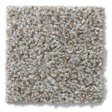 Shaw Floors Value Collections Expect More (t) Net Flax Seed 00130_E0738