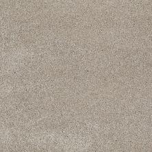 Shaw Floors SFA Awesome 4 Coastal Fog 00702_E0741